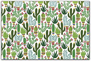 Boutique Printed Tissue Paper for Gift Wrapping with Charming Sedona Desert Illustrations, Decorative Tissue Paper - 24 Large Sheets, 20x30