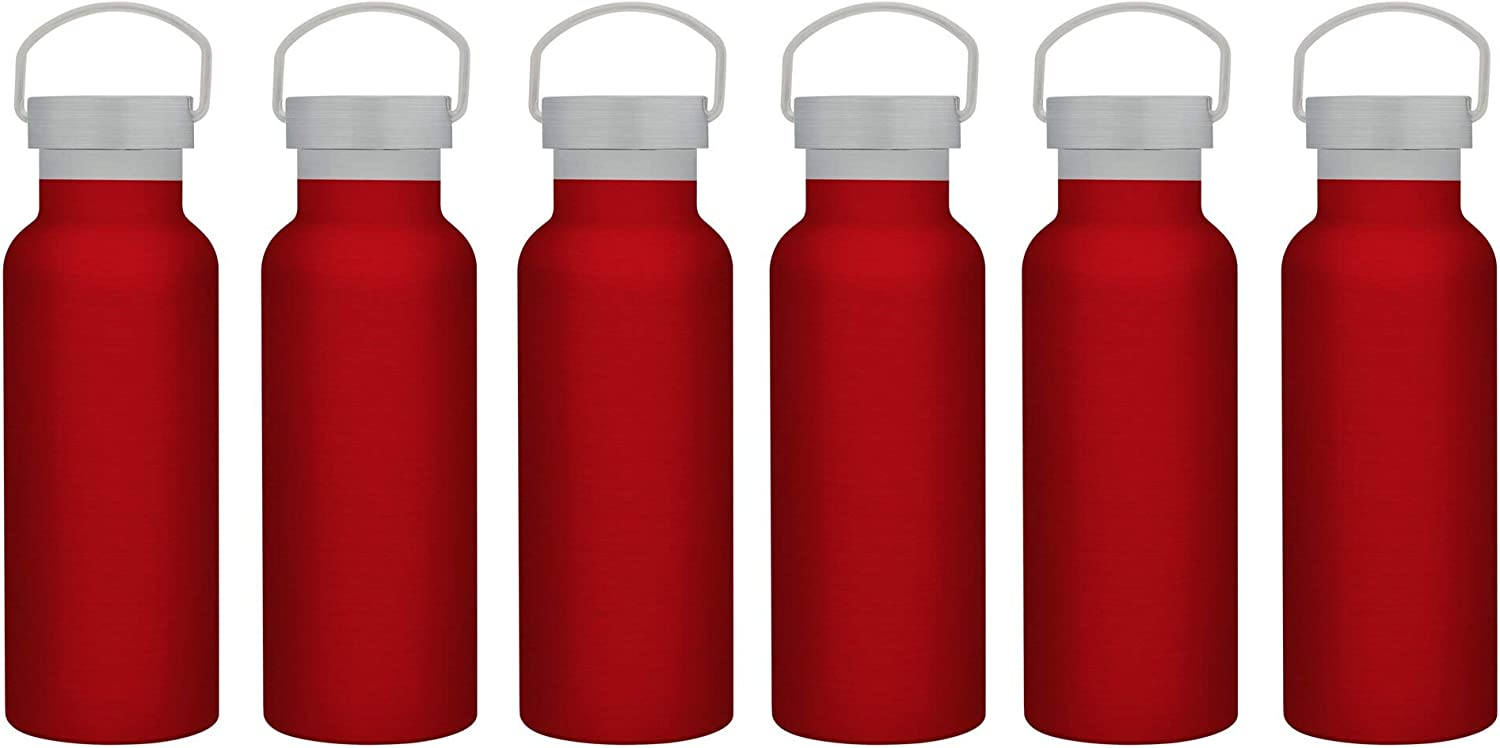 Long Beach Mall Max 62% OFF 6 Stainless Steel Canteen Water Bottles Wal Set oz. 17 Double -