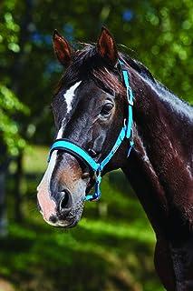 WEATHERBEETA Luxe Breakaway HEADCOLLAR Horse Rug