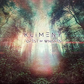 FOREST OF WISHES (REMIXES)