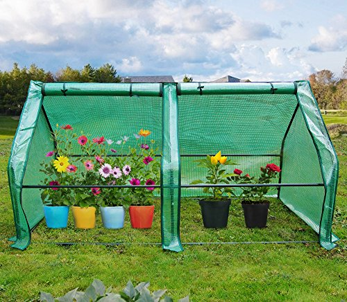 "Quictent Updated Super Large Zipper Doors Mini Greenhouse Portable Cloche Green House 71"" WX 36"" D X 36"" H"