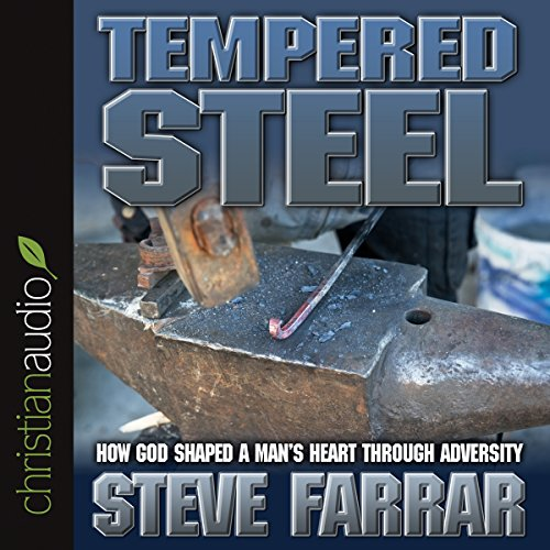 Tempered Steel audiobook cover art