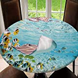 Home Round Fitted Polyester Tablecloth with Elastic Edge Waterproof for Outdoor, Patio, Kitchen&Dining Room, Colorful Fish, Stingray&Black Tipped Tablecloth Size 64