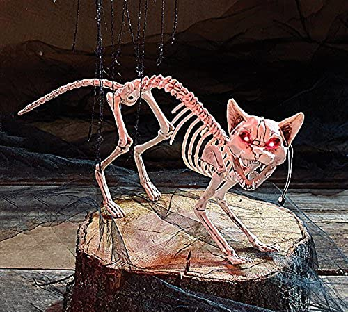 Burton and Burton Skeleton Cat Halloween Decoration with Light Up Eyes Clap Activated by Burton & Burton