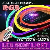 LED NEON Light, IEKOV AC 110-120V Flexible RGB LED Neon Light Strip, 60 LEDs/M, Waterproof, Multi Color Changing 5050 SMD LED Rope Light + Remote Controller for Home Decoration (98.4ft/30m)