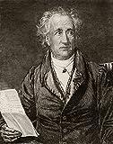 Johann Wolfgang Von Goethe 1749-1832 escritor alemão do livro Goethes Werke de Heinrich Kurtz Print44; grande - 66 x 81 cm
