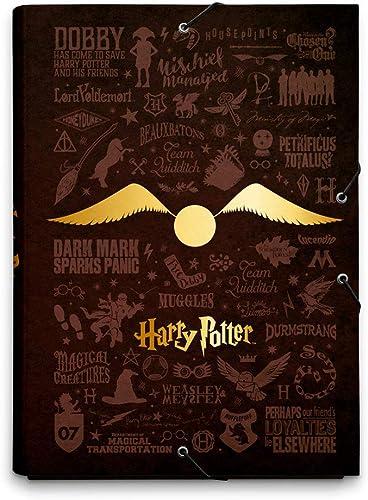 Erik® - Chemise Cartonnée A4 Harry Potter | Chemise à Rabats Rigide | Pochette Cartonnée 24 x 34 cm | Fournitures Sco...