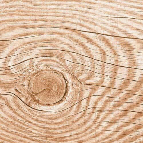20 Servietten Holzstruktur Natur mit Einer Maserung aus Holz von Wald und Natur 33x33cm