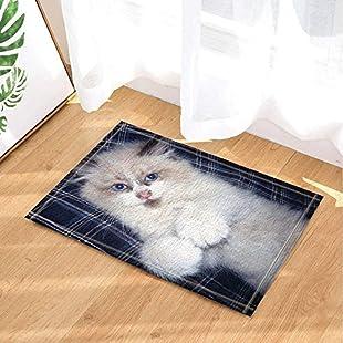 GzHQ Cat Decor White Hairy Cat on Latticed Sheet of Bed Bath Rugs Non-Slip Doormat Floor Entryways Outdoor Indoor Front Door Mat Kids Bath Mat 15.7x23.6in Bathroom Accessories:Tudosobrediabetes