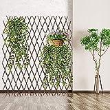 Garden Fence Cerca de madera enretrelis retráctiles de madera paneles de cerca extensible hasta 200 cm plegables ajustables independientes de madera enrejado de madera en trellis jardín jardín balcón