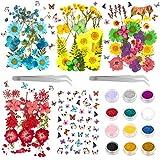 OMEW 149 Pcs Flores Secas Naturales Manualidades, Flores Secas Decoraciones y joyería artesanías con Brillantina de 12 Colores, Pegatinas y 2 Pinzas para DIY áLbumes de Recortes y Maquillaje Facial