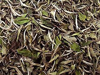 白牡丹 50g 【白茶】