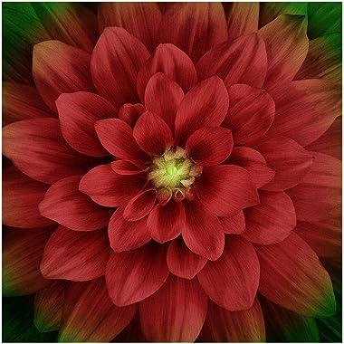 Hoffman Digital Dream Big 43'' Floral Panel Scarlet Fabric