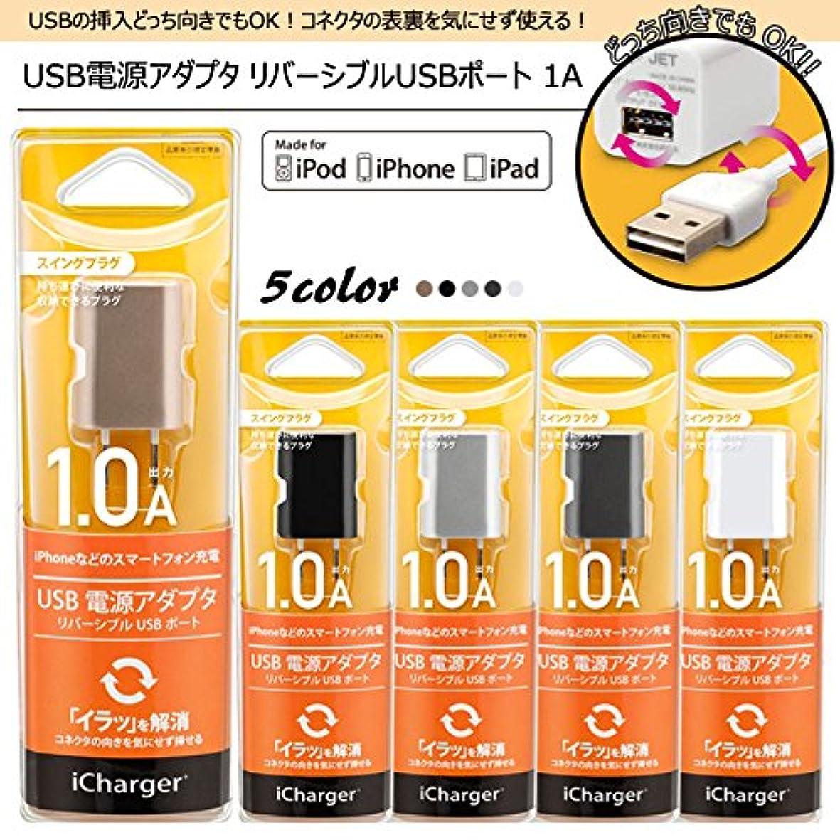 基本的な観客離れてiCharger USB電源アダプタ リバーシブルUSBポート 1A スペースグレイ PG-RAC10A05SG PG-RAC10A05SG