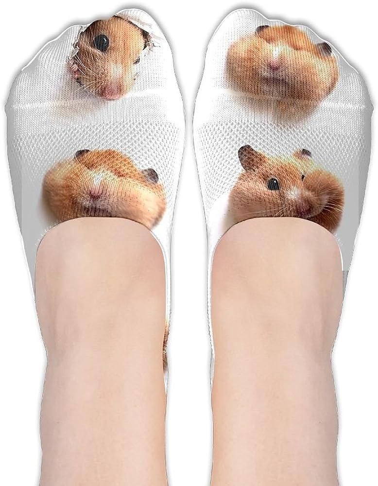 Womens Socks Athletic Low Cut No Show Liner Ship Hamster Cute Non Slip Hidden Flat Boat