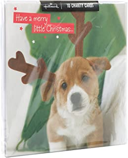 Best pug charity christmas cards Reviews