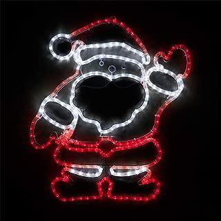 Wintergreen Lighting LED Christmas Decorations Outdoor, Christmas LED Decorations Outdoor, LED Rope Light (28