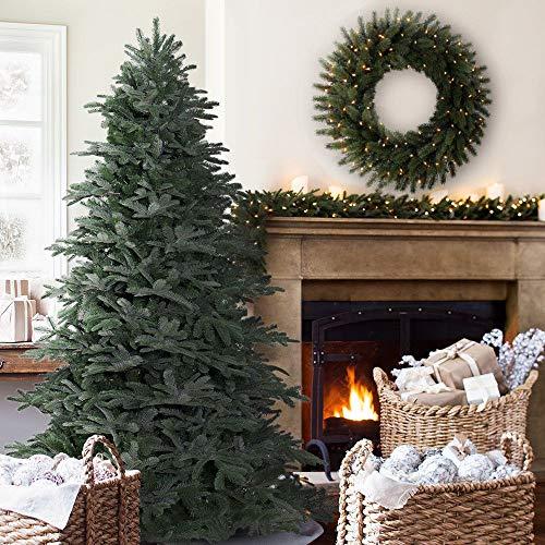 Balsam Hill 5ft Nordmann Fir Artificial Christmas Tree - Unlit