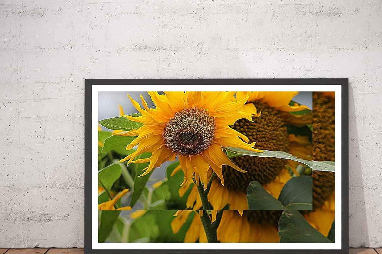 消費するビーム雲ひまわり ヒマワリ 花柄 絵画、版画、家の装飾、壁の装飾 43x33cm