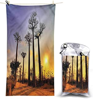 Ahuimin Microfiber Beach Towel, Sunset,Tall Tree Madagascar Skyline, 55 x 27.5 Inches Super Absorbent Quick Fast Drying Soft Eco-Friendly Towels for Body Bathroom Travel