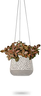 3 Pack Hanging Planter   White Concrete Succulent Pots   Round Air Plant Holder Container   Cactus Pot with Rope Hanger   ...