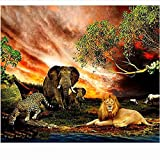 LKAZLL Oil Painting Kits DIY Paint by Numbers Canvas Home Decoration Art Wall Gift Elephant Lion Leopard 16x20 inch