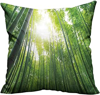 YouXianHome Decorative Couch Pillow Cases Bamboo Grove,Bamboo Forest at Arashiyama,Kyoto,Japan Easy to Wash(Double-Sided Printing) 31.5x31.5 inch