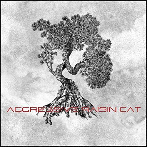 Aggressive Raisin Cat