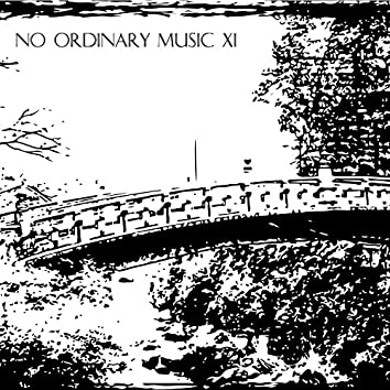 No Ordinary Music Vol.XI