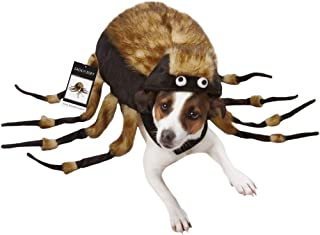 frisco tarantula spider dog costume