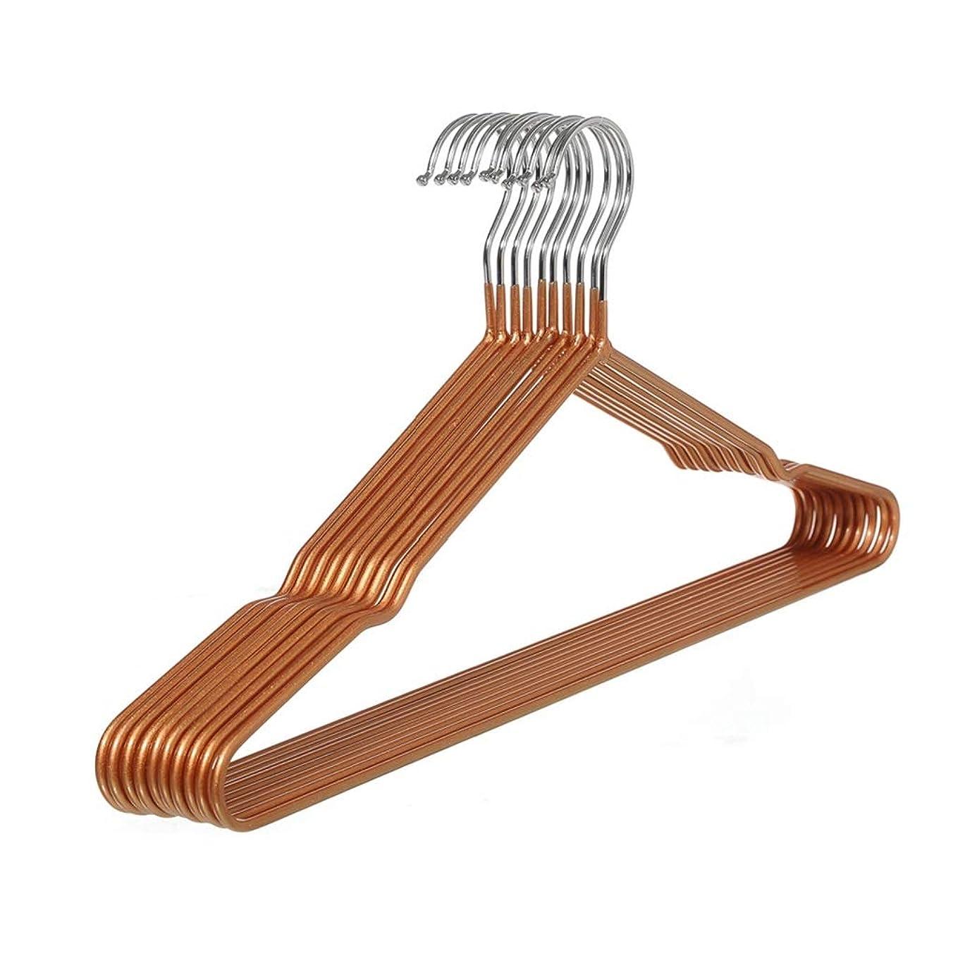 振動する懸念製作10ピースステンレスハンガー、衣服/ズボン/標準スーツハンガー、ディップ乾燥衣類ハンガー、衣類ラック