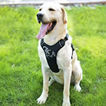 iBuddy Dog Harness No Pull Vest Harnesses for Medium and Large Dogs with Handle and Front/Back Leash Attachments, Easy On and Off Reflective Adjustable Pet Harness Non Choke for Walking and Training