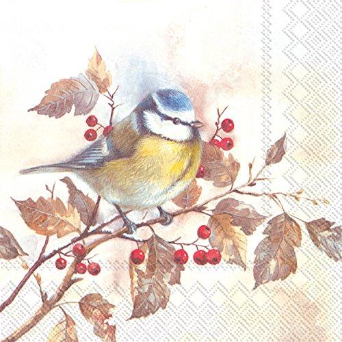 Ideal Home Range L746801tovaglioli, Sweet Little Bird
