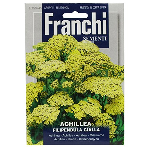 Seeds of Italy Franchi Graines d'achillée eupatoire