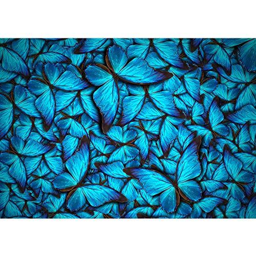 Vlies fotobehang 350x245 cm - Top ! Premium plus fotobehang. Muurschilderingen XXL muurschildering beeld fotobehang behang wandbehang wanddecoratie wand dieren natuur vlinders - nr. 192
