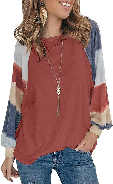 Asvivid Color Block Tunic Tops for Women Crewneck Long Sleeve Fall Shirts Casual Loose Pullover T-Shirt Blouses