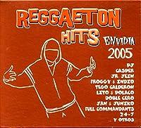 Reggaeton Hits 2005 Envid