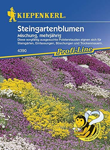 Kiepenkerl 4390 Steingartenblumen Mischung (Steingartenblumensamen)