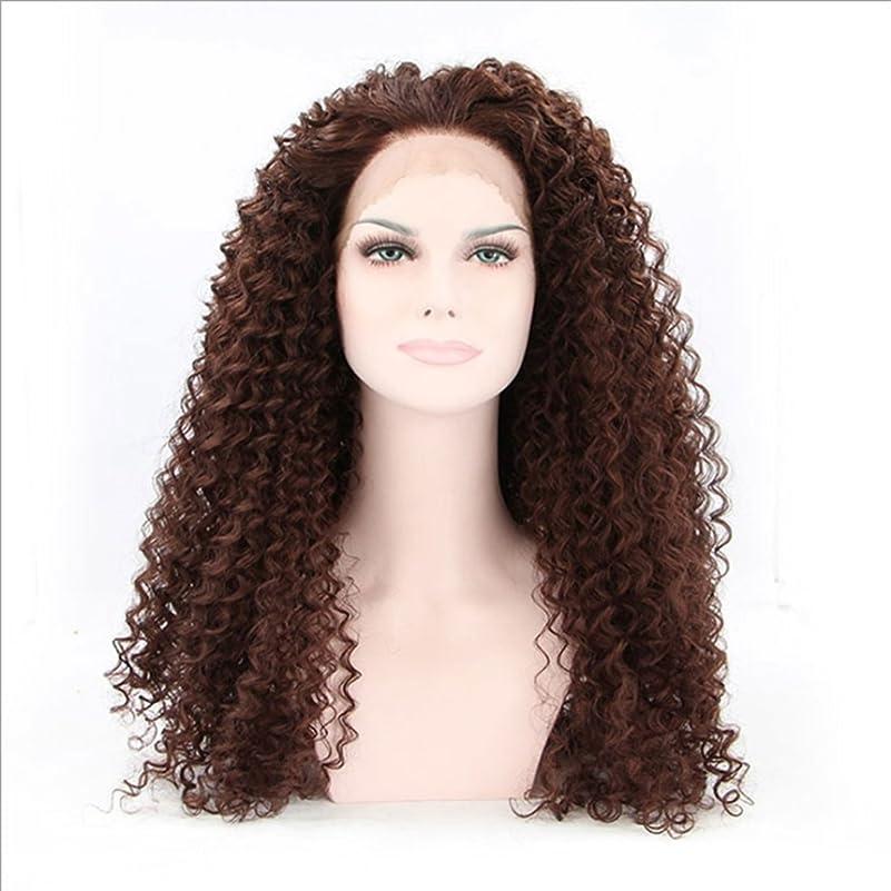 解明する肉の社員JIANFU (ブラウン黒、黒)女性のための耐熱性のウィッグレース前部アフリカンスモールロールズナチュラルカラーの髪完全な手織りの髪のための合成長いカーリーウィッグ (Color : Brownish black)