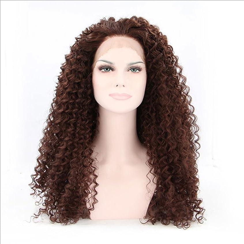 びんカフェゲストDoyvanntgo 女性のための耐熱性のウィッグレース前部アフリカンスモールロールズ自然な色の髪完全な手織りの髪のための合成長いひねりのかつら(茶色の黒、黒) (Color : Brownish black)