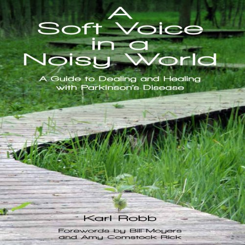 A Soft Voice in a Noisy World audiobook cover art
