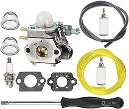 HIPA 753-06190 Carburetor with Fuel Line Fuel Filter Spark Plug for MTD Craftsman String Trimmer 316711023 316711390 316711020 316711021 316711022 316711370 316711470 316711471 316990100 Brushcutter