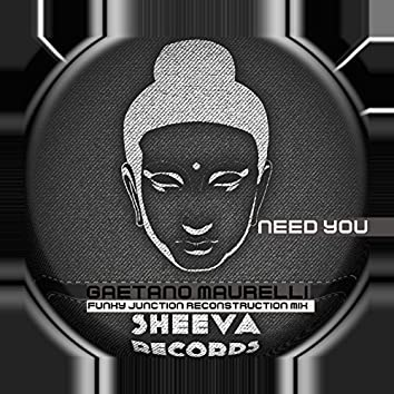Need You (Funky Junction Reconstruction Mix)