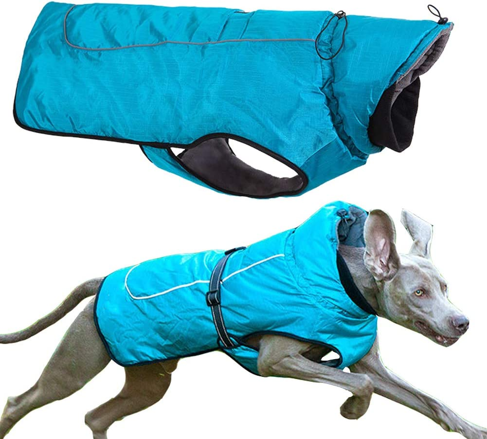 Limited time sale PJDDP Dog Max 50% OFF Jacket Winter Coat Waterproof Reflective Windproof