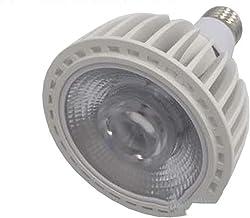 Led gloeilampen LED 20W White COB Par30 Commerciële Constante Verlichting PAR Light Constant Huidige Breedtespanning Verli...