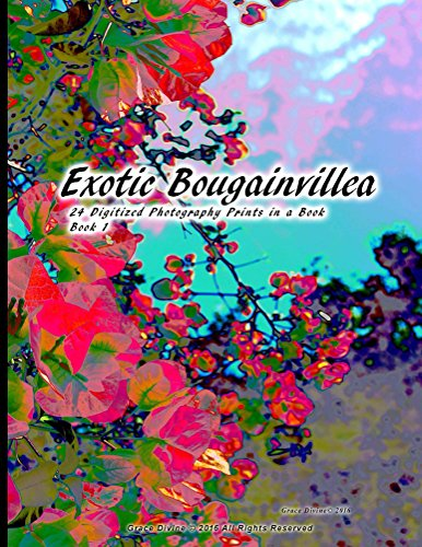Exotic Bougainvillea 24 Digitized Photography Prints in a Book Book 1 (English Edition)