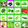 Krisah® (1985+) 46 Varieties of Vegetables Seeds Combo with Starting your own Garden Guide #1