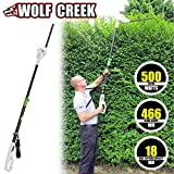Wolf Creek HT50 500W Electric Hedge Trimmer Telescopic Long Reach Pole