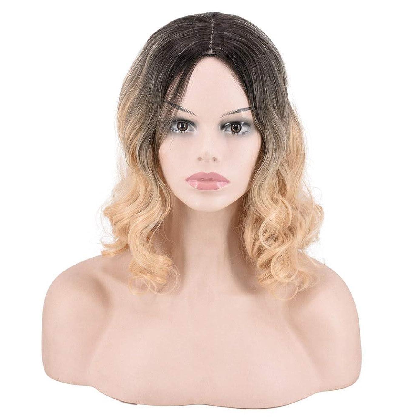 アクセス聴く不安定なMayalina ブロンドのグラデーションふわふわ梨花ロール女性の肩のカールビッグウェーブかつら複合毛レースのかつらロールプレイングかつら (色 : Blonde)