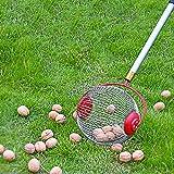 Nuss Mähdrescher Ball Picker,Obstsammler, Nusssammler, Rolling Ball Pflücker, Outdoor Handwerkzeug Pflücker, Die Obstaufsammelmaschine für Walnuss, Pekannuss, Apfel und Golfball Größe S
